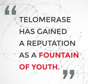 fountain-of-youth-quote
